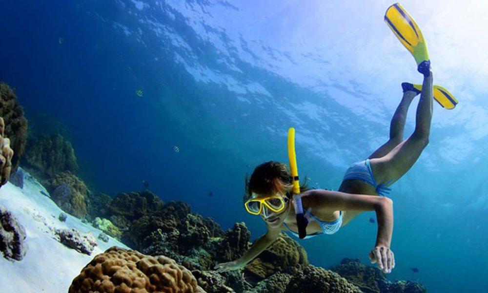 Sail, snorkel, scuba dive - and more!