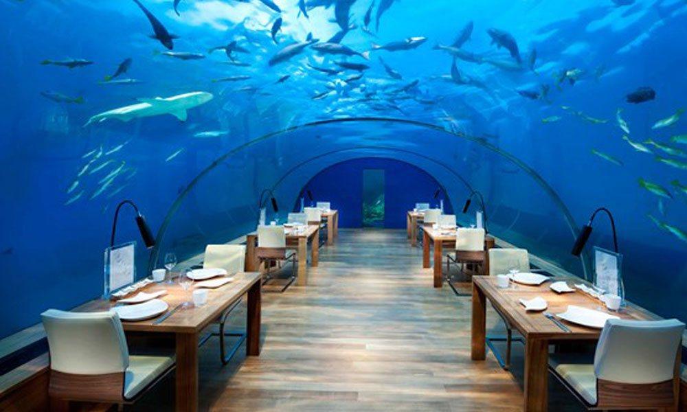 All underwater everything